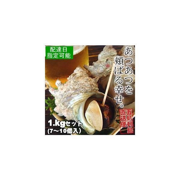 【国産】天然活さざえ(サザエ)壺焼き用サイズ1kgセット(7〜10個入)※バーベキュー(BBQ)にお薦め
