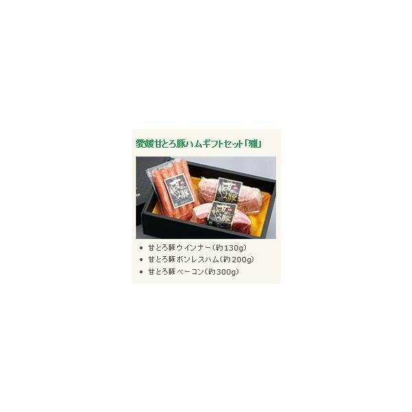 ハムギフトセット 「雅」 愛媛 甘とろ豚 (株)ビージョイ