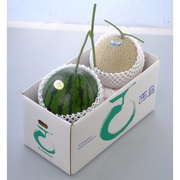 高知県産 マスクメロンとすいかのセット ギフト 果物お取り寄せ メロン(産地直送)(送料込み)(期日指定できません)