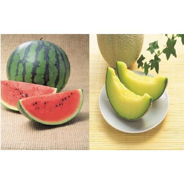 高知県産 マスクメロンと小玉すいかのセット ギフト 果物お取り寄せ メロン(産地直送)(期日指定できません)