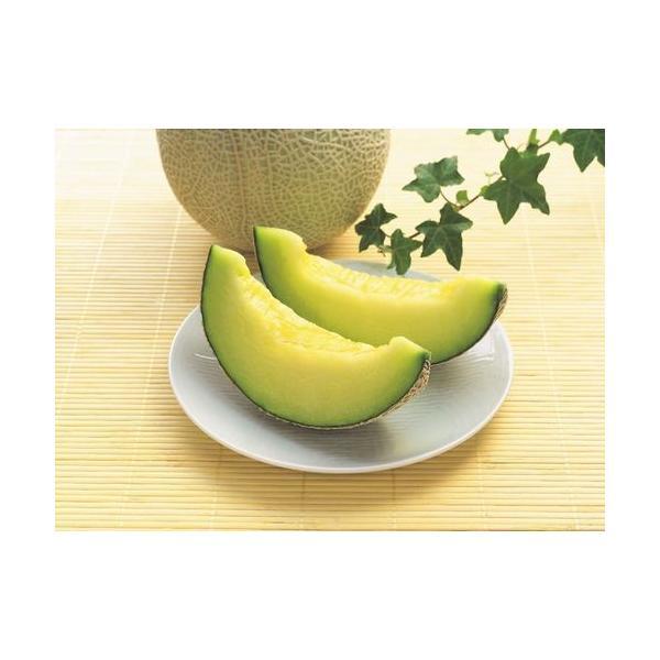 高知県産 ご家庭用 マスクメロン 2玉 ギフト 果物お取り寄せ メロン(産地直送)(送料込み)(期日指定できません)