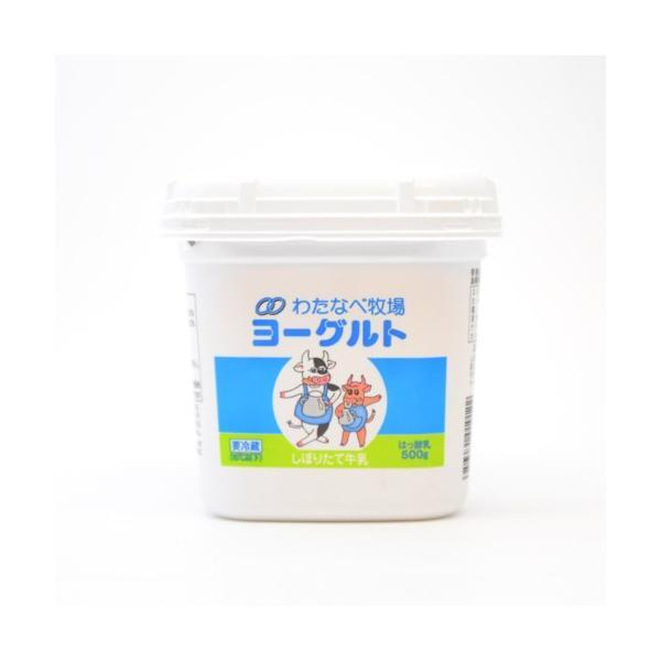 わたなべ牧場 ヨーグルト無糖 500g×6個 (送料込み) 乳製品