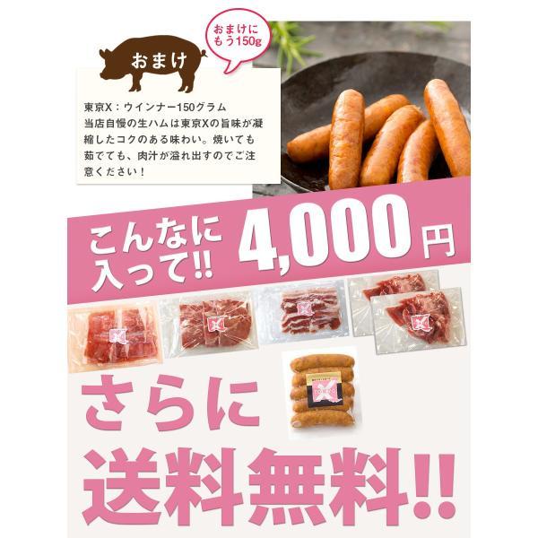 送料無料 TOKYO X 焼肉 セット 600g  東京X トウキョウエックス 焼肉 BBQ おまけ ギフト 贈り物 父の日 お中元|the-nikuya|05