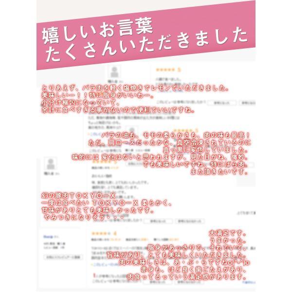 送料無料 TOKYO X 焼肉 セット 600g  東京X トウキョウエックス 焼肉 BBQ おまけ ギフト 贈り物 父の日 お中元|the-nikuya|06