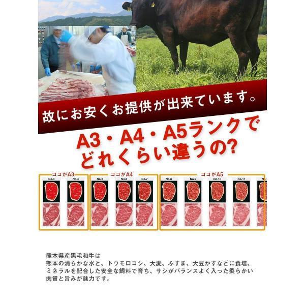 黒毛和牛 サーロイン (230g) 【贈り物/プレゼント/父の日/母の日 牛肉 サーロイン ステーキ】|the-nikuya|03