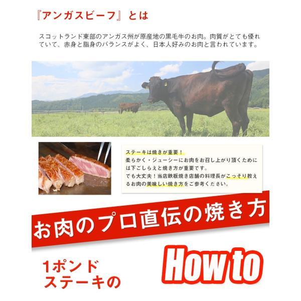 熟成 アンガスビーフ 厚切り サーロインステーキ 1ポンド 【 牛肉 ステーキ肉 塊 熟成肉 サーロイン 赤身肉 BBQ 】 2枚以上購入で送料無料|the-nikuya|04