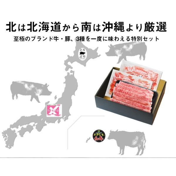 ギフト 送料無料 おきなわ和牛・TOKYOX・どろぶた豪華三種盛りセット(1kg) すき焼き・しゃぶしゃぶ用 サーロイン ロース バラ もも 牛肉 豚肉 お歳暮 お中元|the-nikuya|03