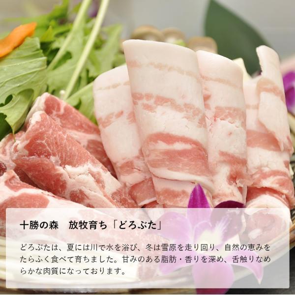 ギフト 送料無料 おきなわ和牛・TOKYOX・どろぶた豪華三種盛りセット(1kg) すき焼き・しゃぶしゃぶ用 サーロイン ロース バラ もも 牛肉 豚肉 お歳暮 お中元|the-nikuya|06