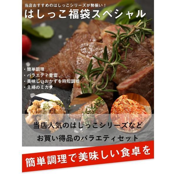 訳あり はしっこ お肉 福袋 送料無料 6種 4kg 人気シリーズ 牛ハラミ・牛カルビ・豚ロース・ハンバーグ などなど|the-nikuya|02