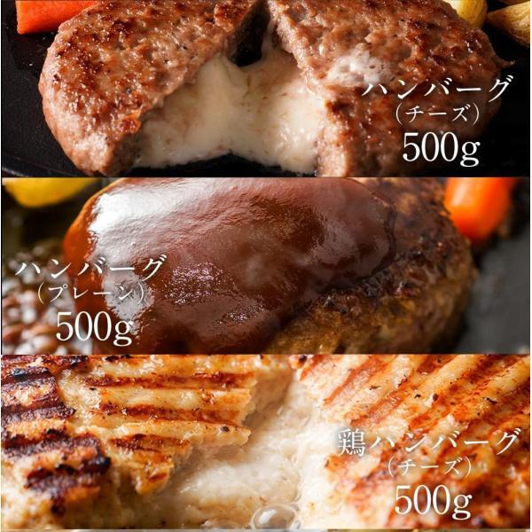 訳あり 送料無料 はしっこ 福袋 Aセット 6種 4kg超え・ハラミ・カルビ・ハンバーグパテ・豚トロど おまけにはしっこお肉がさらに500g|the-nikuya|04
