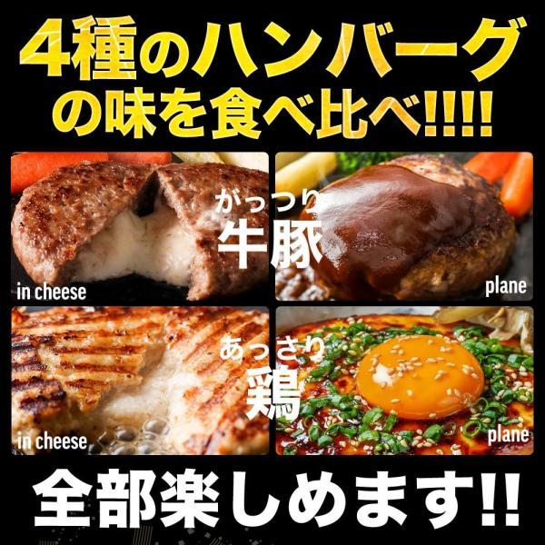 訳あり 送料無料 はしっこ 福袋 Aセット 6種 4kg超え・ハラミ・カルビ・ハンバーグパテ・豚トロど おまけにはしっこお肉がさらに500g|the-nikuya|10