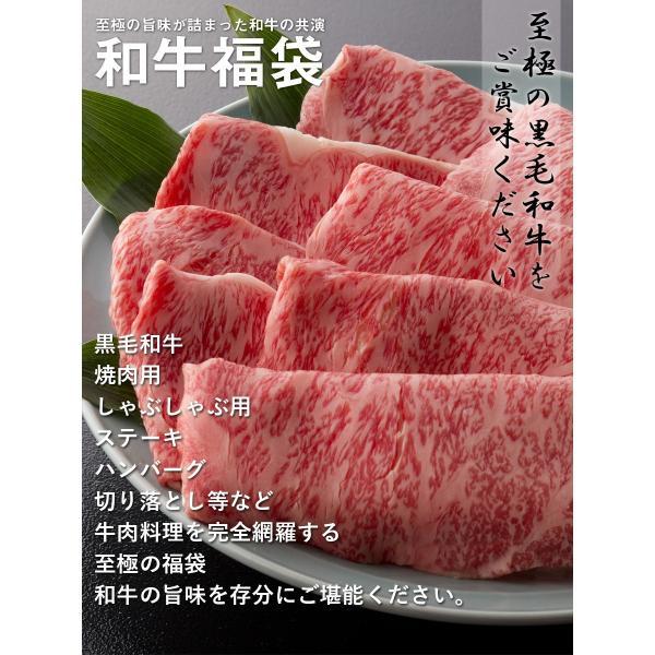 送料無料 福袋 しゃぶしゃぶ 焼肉 ステーキ ハンバーグ等、和牛の旨味を存分に楽しめる 和牛福袋(600g 4〜6人前) 黒毛和牛 牛肉 父の日 ギフト お祝い お中元|the-nikuya|02