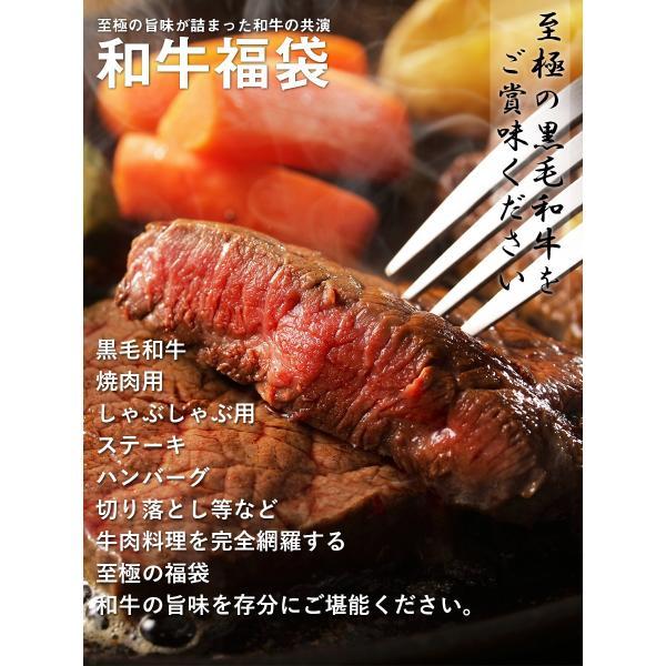 送料無料 福袋 ステーキ 焼肉 しゃぶしゃぶ ハンバーグ等、和牛の旨味を存分に楽しめる 和牛福袋(800g 6〜8人前) 黒毛和牛 牛肉 父の日 ギフト お祝い お中元|the-nikuya|02