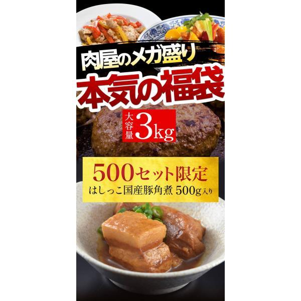 訳あり はしっこ お肉福袋 送料無料 4種 3kg 人気のはしっこシリーズ・ソーセージ・豚ロース・ハンバーグなど|the-nikuya|02