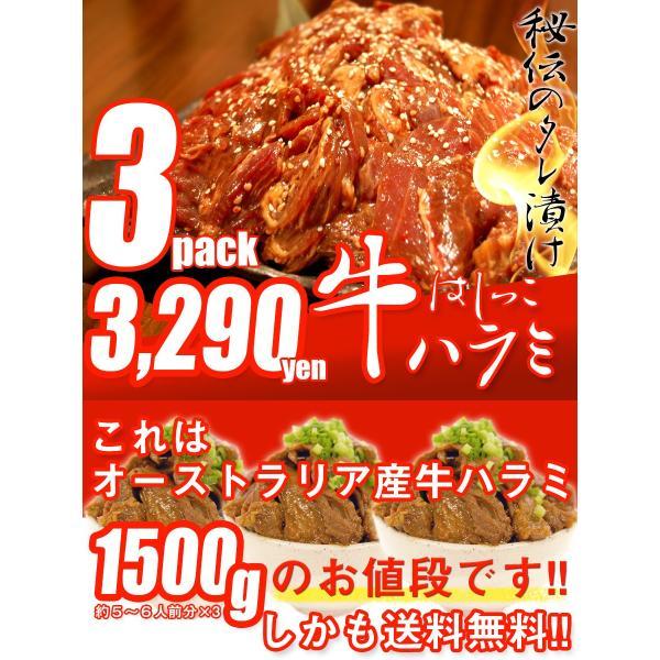送料無料 はしっこ タレ漬け 牛ハラミ 500g×3 大容量 訳あり 業務用 端っこ はじっこ 焼肉 BBQ バーベキュー 1500g 1.5kg|the-nikuya|02