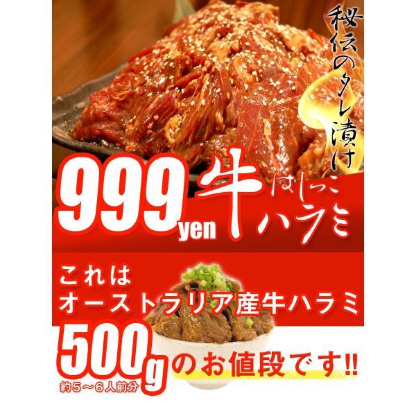 はしっこ タレ漬け牛 ハラミ 500g 訳あり 業務用 端っこ はじっこ 焼肉 500g BBQ バーベキュー|the-nikuya|02