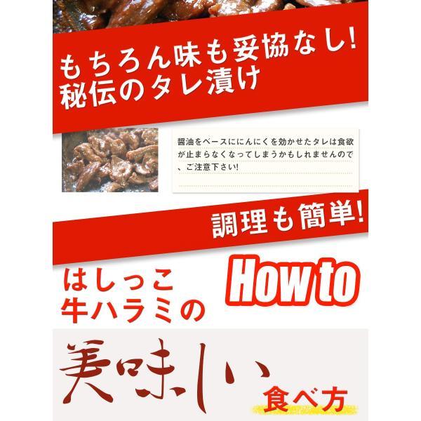 はしっこ タレ漬け牛 ハラミ 500g 訳あり 業務用 端っこ はじっこ 焼肉 500g BBQ バーベキュー|the-nikuya|04
