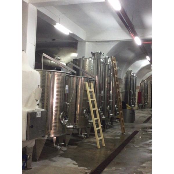 「ベツレヘムの星シリーズ ハムダニ・ジャンダリ」パレスチナ自治区産 白ワイン 2017年(オーガニック)|the-sacred-wine|05