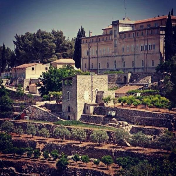 「ベツレヘムの星シリーズ ハムダニ・ジャンダリ」パレスチナ自治区産 白ワイン 2017年(オーガニック)|the-sacred-wine|07