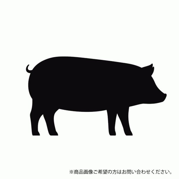 BBQ 豚丸焼き用 仔豚さん 丸ごと 1匹 約5kg バーベキュー 肉 冷凍 生 未調理 送料無料