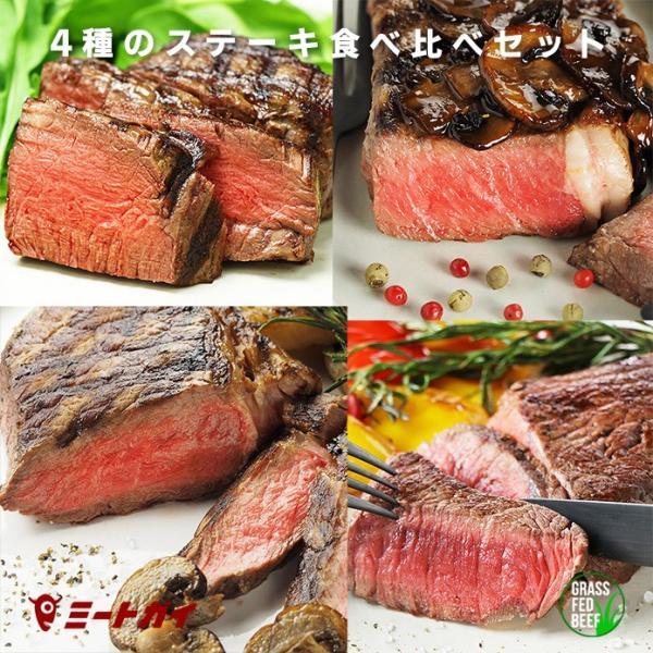 送料無料 4種のステーキ肉 食べ比べセット(スパイスのおまけ付き)牛肉 ステーキ 赤身 グラスフェッドビーフ