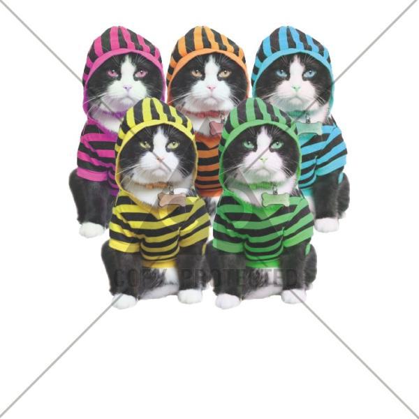 パーカー レディース スウェット プルオーバー 長袖 ネコ 猫フード カラフル 猫レンジャー カワイイ かわいい おしゃれ トレンド|three-o-one|05