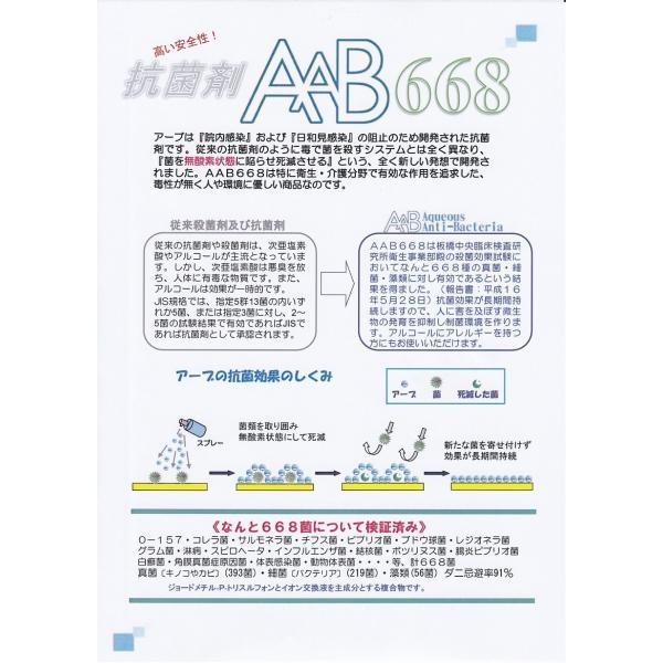 抗菌・抗ウィルス剤AAB668消臭タイプ50ml (あーぶ アーブ aab AAB 668 非アルコール 非エタノール スプレー 除菌 消臭 抗菌剤 ウイルス)|threelink|02