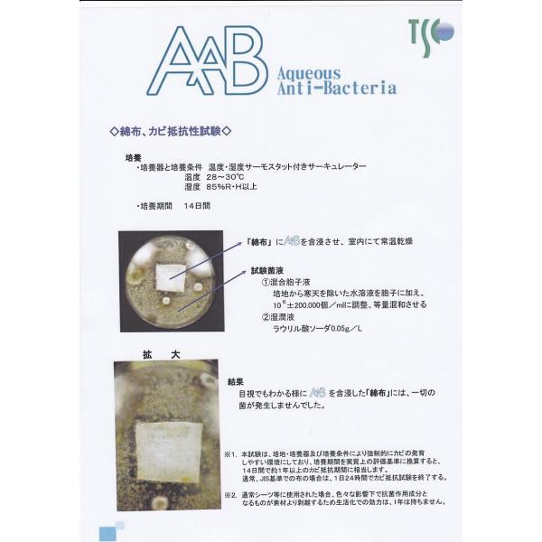 抗菌・抗ウィルス剤AAB668保湿タイプ50ml (あーぶ アーブ aab AAB 668 非アルコール 非エタノール スプレー 除菌 消臭 抗菌剤 ウイルス)|threelink|05
