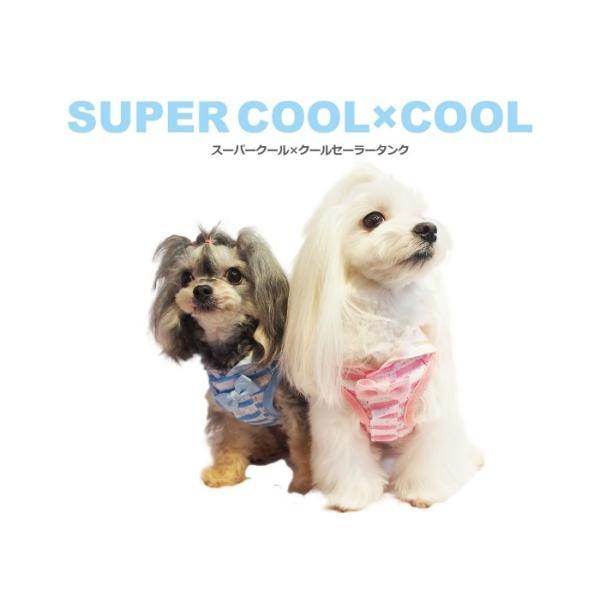 クークチュール Coo Couture スーパークール×クール セーラータンク 小型犬 犬服 ウエア トップス タンク クール素材 ひんやり|tiarapetsjapan|05