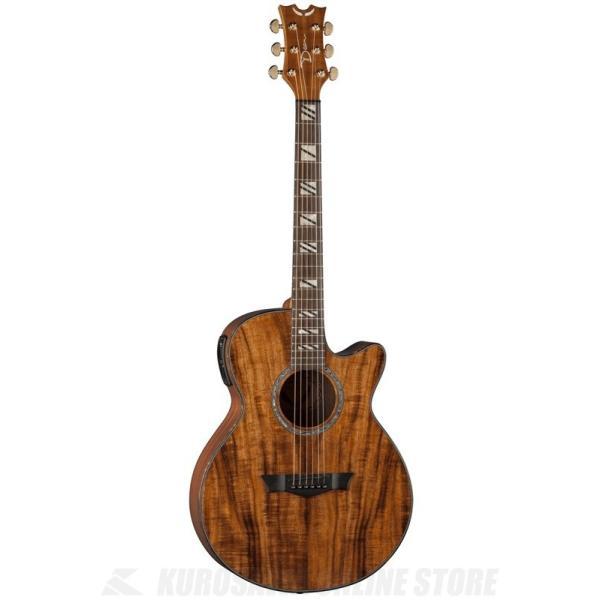 DEAN Performer A/E w/Aphex / Performer A/E w/Aphex - Koa Wood [PE KOA](アコースティックギター)(送料無料)(お取り寄せ)|tiptoptone