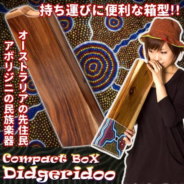 ボックス・ディジュリドゥ / オーストラ レビューでタイカレープレゼント|tirakita-shop
