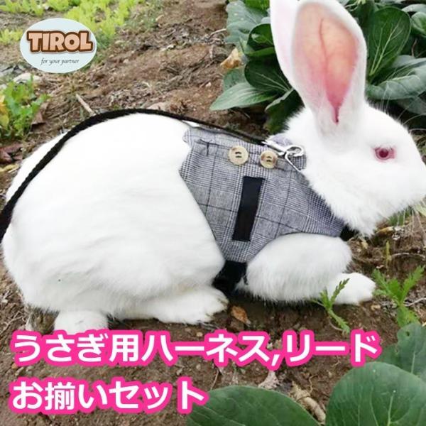|うさぎ用 ハーネス リード セット ウサギ用 小動物用 胴輪 散歩 お出かけ 外出 ペット グッズ…