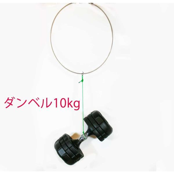 磯タモ 64チタン ワンピース 玉枠 45cm Φ5mm ( ロクヨン チタン フレーム  )|titanium|06