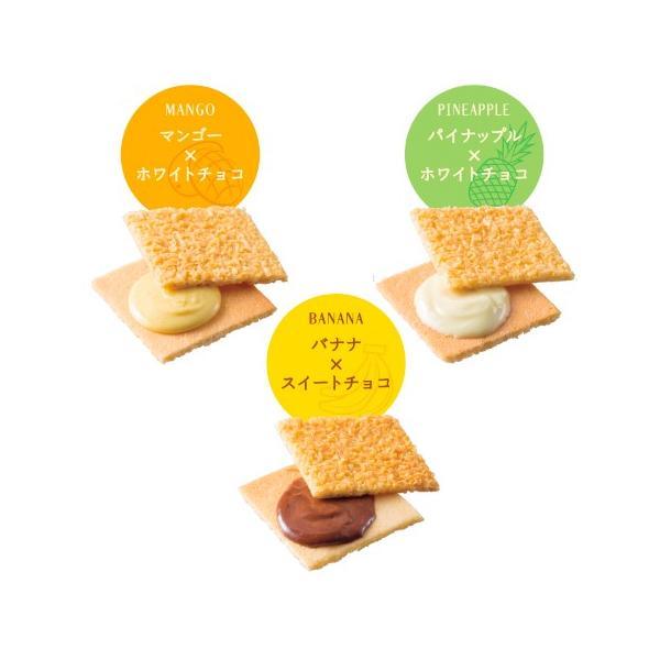 赤い帽子 |ギフト お菓子 おしゃれ ギフトセット 女性 お菓子 詰め合わせ ギフト お菓子 300 | ココナッツチョコサンド クッキー 詰め合わせ 3種類9枚 赤い帽子|tivoli-factory|03