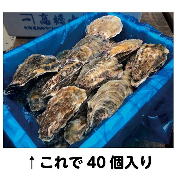 牡蠣 送料無料 オープン記念  仙鳳趾の牡蠣40個以上保証 4kg詰め 大きさ無選別|tkhs946|03