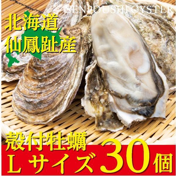 北海道仙鳳趾(せんぽうし)殻付牡蠣 Lサイズ(200g〜249g) 30個入り|tkhs946
