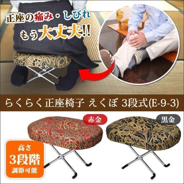 正座椅子 らくらく 高さ 3段切替型 えくぼ E-9-3 tkp 06