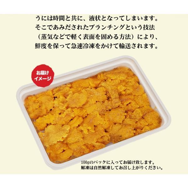 お中元 ギフト うに 冷凍生うに 100g ミョウバン不使用 最高Aグレード|tmfoods|02