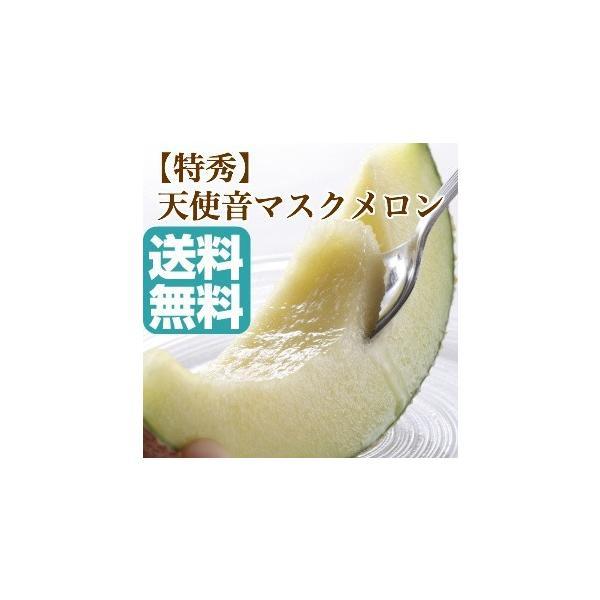 メロン フルーツ Fruits 天使音 マスクメロン 静岡県産 送料無料 高級メロン 果物