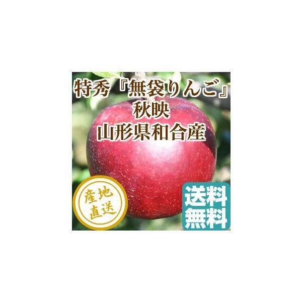 りんご フルーツ Fruits 秋映 特秀 山形県和合産 無袋りんご 特選5kg箱18個入り 産地直送 送料無料 フルーツギフト