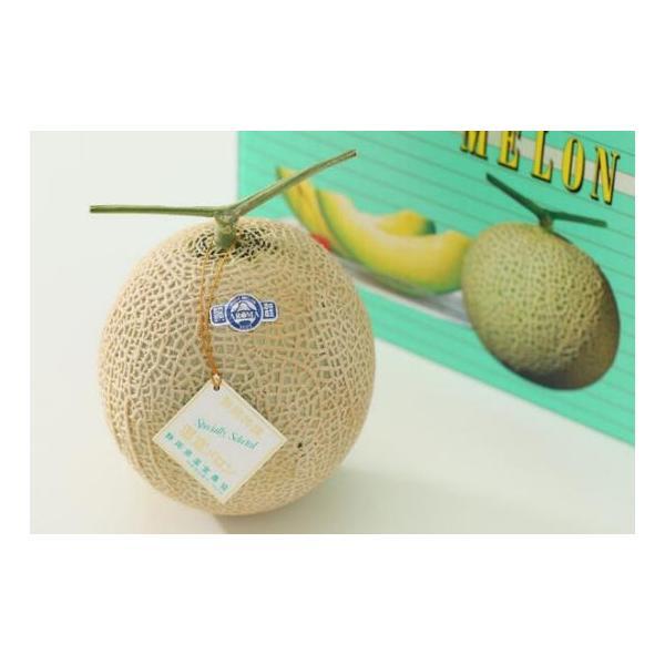 メロン 静岡産 温室マスクメロン 1.8kg(白級)×2個  高級メロン アールスメロン 母の日 父の日 プレゼント フルーツ