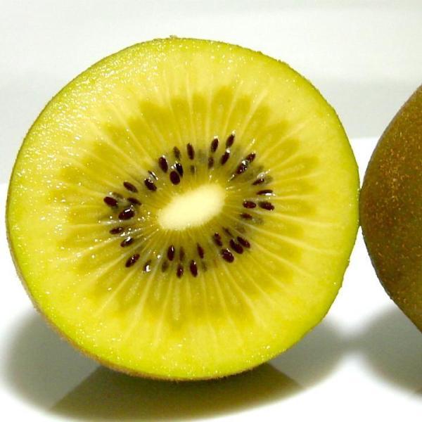 キウイセット (サンゴールドキウイ30個・グリーンキウイ30個) 約7.2kg 60個入り NZ産 ゼスプリ|黄金 緑肉 キウイフルーツ  母の日 父の日 プレゼント