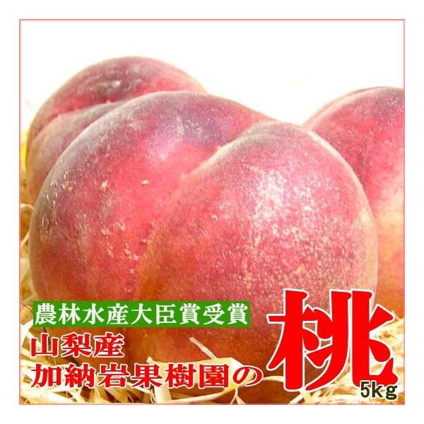 もも 加納岩果樹園の桃 約5kg 大玉 15〜16個入り 山梨産 第一回農林水産大臣賞受賞  モモ 白鳳 白桃 ピーチ 水蜜桃 高級桃 山梨もも