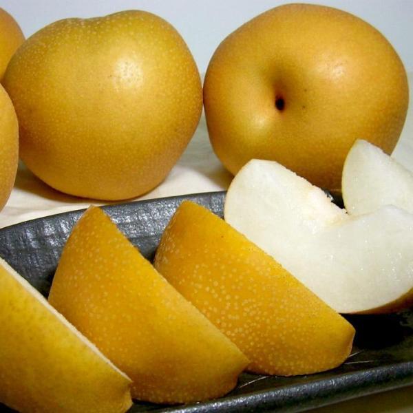 豊水梨 ほうすいなし 約10kg 大玉28〜32個入り 長野産|信州なし ナシ 赤梨 信濃