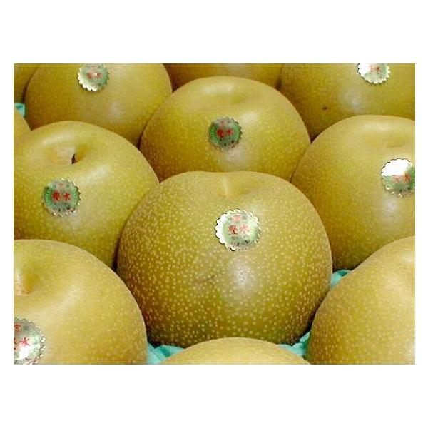 梨 幸水梨 こうすいなし 約10kg 大玉 28〜32個入り 佐賀産 伊万里  和梨 赤梨 プレゼント ギフト ナシ