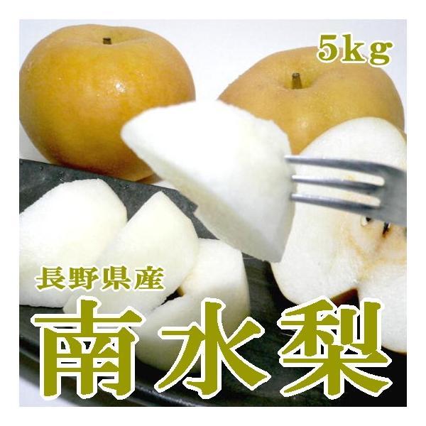和梨 信濃の南水梨 なんすいなし 約5kg 大玉 12〜14個入り 長野産 赤梨 ナシ 信州なし