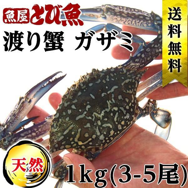 ワタリガニ ガザミ 約1kg(3-5尾) 活〆 天然 若狭小浜 タイワンガザミ 送料無料|tobiuo