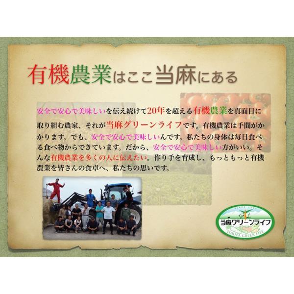 北海道米 令和元年産 安心 安全 有機米 お米 当麻  有機JAS とっとき 純子 (有機栽培 ゆめぴりか 100%) 5kg 米 有機栽培米 オーガニック 北海道|tohma-greenlife|11