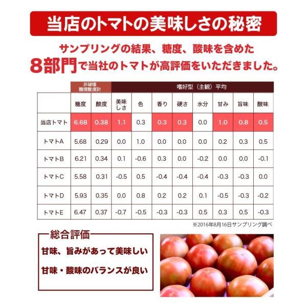 母の日 有機JAS トマトジュース 無塩 2種飲み比べセット180ml 6本セット ギフトセット 北海道 当麻  有機トマト 祝い 国産 ギフト プレゼント|tohma-greenlife|07
