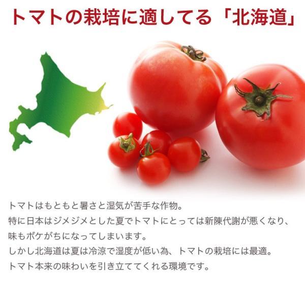 寒中見舞い ギフトセット トマトジュース 北海道 当麻  シシリアンルージュのジュースピューレ(無塩)180ml×4本+(有塩)720ml1本 祝い 国産 ギフト|tohma-greenlife|03